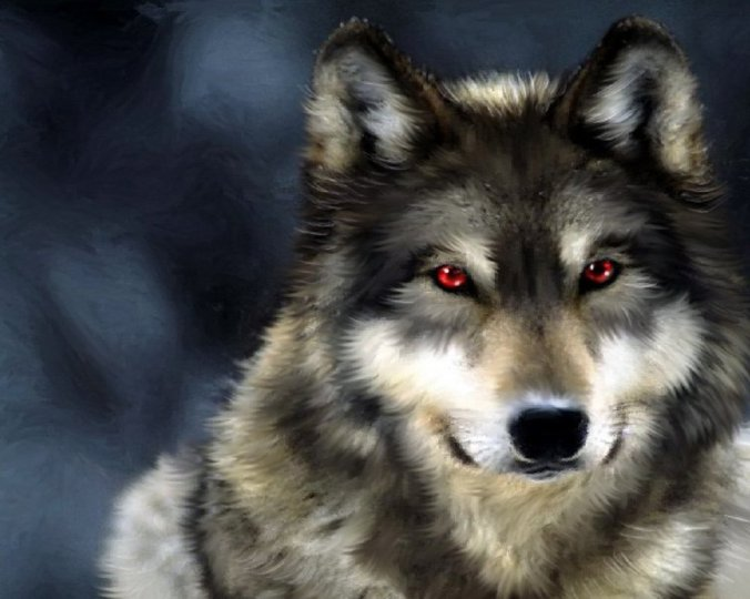 __the_wolf_with_red_eyes___by_obeyyourownrules-d65kpwu